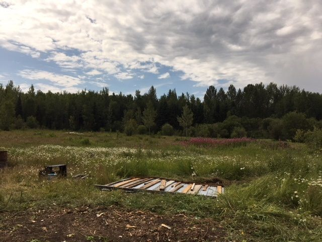 Photo 2: Photos: 1958 W SALES Road in Quesnel: Red Bluff/Dragon Lake Land for sale (Quesnel (Zone 28))  : MLS®# R2394023