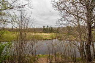 Photo 4: 364 Main Street in Lawrencetown: 400-Annapolis County Residential for sale (Annapolis Valley)  : MLS®# 202111332