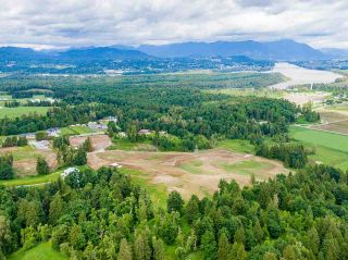 Photo 14: 31050 HARRIS Road in Abbotsford: Bradner House for sale : MLS®# R2588526