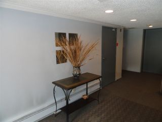 """Photo 11: 203 3264 OAK Street in Vancouver: Cambie Condo for sale in """"THE OAKS"""" (Vancouver West)  : MLS®# R2072297"""