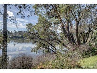 Photo 11: 403 105 E Gorge Rd in VICTORIA: Vi Burnside Condo for sale (Victoria)  : MLS®# 723101