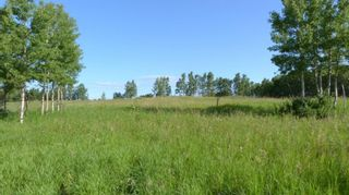 Photo 11: 224061 274 Avenue W: Rural Foothills County Residential Land for sale : MLS®# A1095002