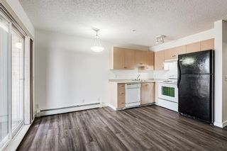 Photo 17: 3209 1620 70 Street SE in Calgary: Applewood Park Apartment for sale : MLS®# A1116068