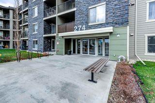 Photo 1: 420 274 MCCONACHIE Drive in Edmonton: Zone 03 Condo for sale : MLS®# E4265134