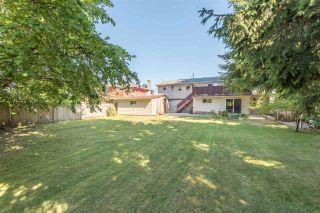 "Photo 19: 3860 WILLIAMS Road in Richmond: Steveston North House for sale in ""STEVESTON NORTH"" : MLS®# R2236248"