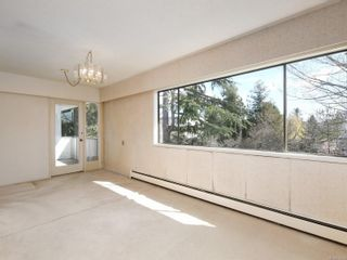 Photo 6: 305 3880 Shelbourne St in : SE Cedar Hill Condo for sale (Saanich East)  : MLS®# 872259