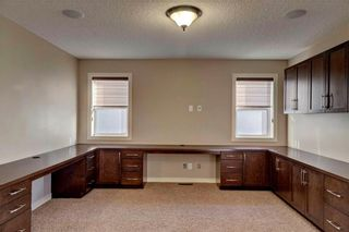 Photo 17: 280 MAHOGANY Terrace SE in Calgary: Mahogany House for sale : MLS®# C4121563
