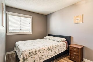 Photo 29: 274 Fresno Place NE in Calgary: Monterey Park Detached for sale : MLS®# A1149378