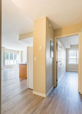 Photo 16: 107 11109 84 Avenue in Edmonton: Zone 15 Condo for sale : MLS®# E4242015