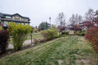 Photo 47: 4206 TRIOMPHE Point: Beaumont House for sale : MLS®# E4266025