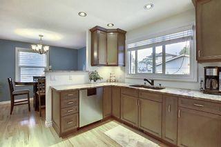 Photo 8: 376 DEERVIEW Drive SE in Calgary: Deer Ridge Detached for sale : MLS®# A1034860