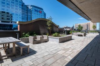 Photo 6: 1101 1650 Granville Street in Halifax: 2-Halifax South Residential for sale (Halifax-Dartmouth)  : MLS®# 202124252