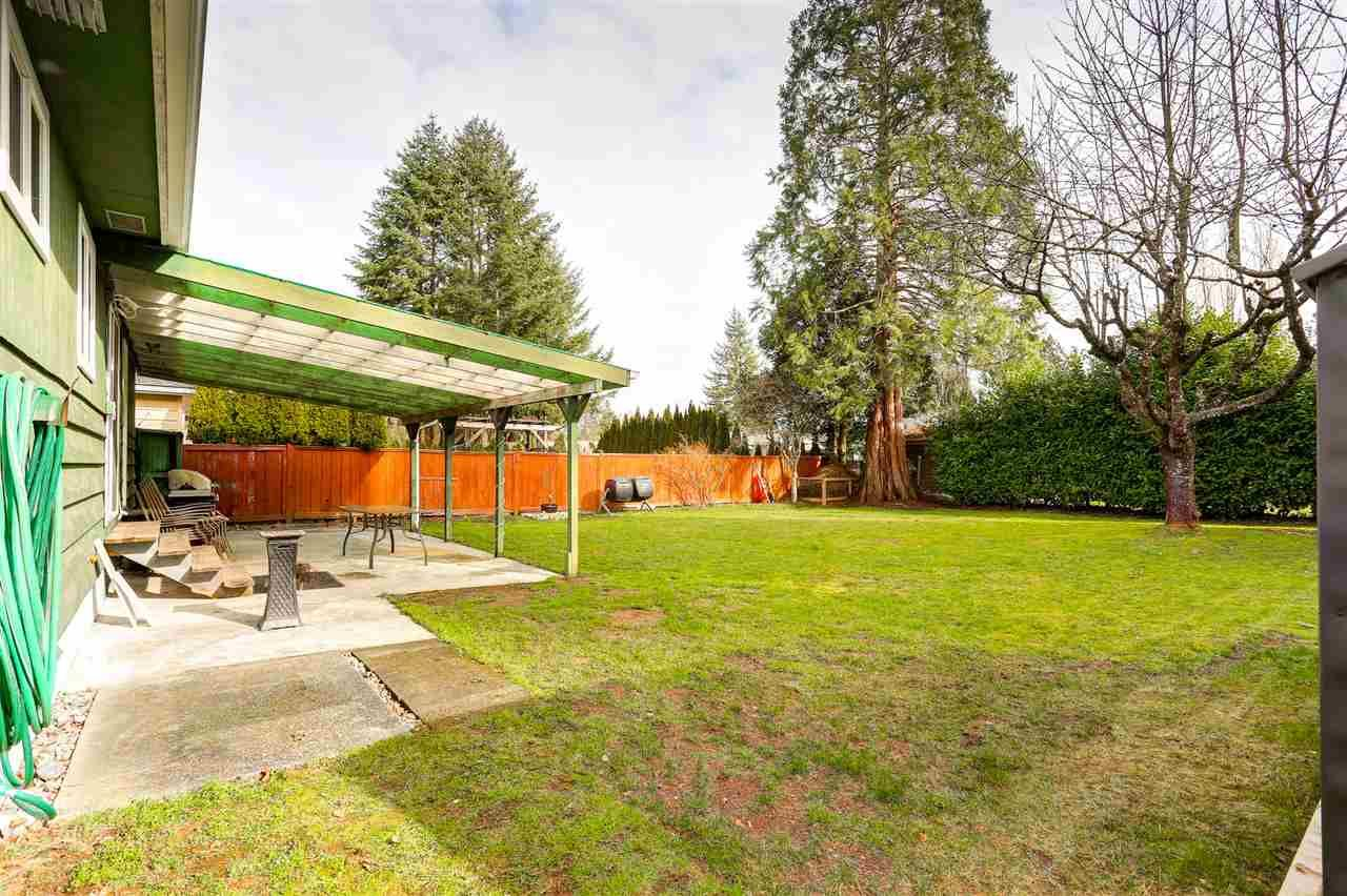 Photo 19: Photos: 11632 STEEVES STREET in Maple Ridge: Southwest Maple Ridge House for sale : MLS®# R2038534