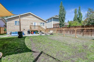 Photo 27: 908 6 Street SE: High River Detached for sale : MLS®# A1122473