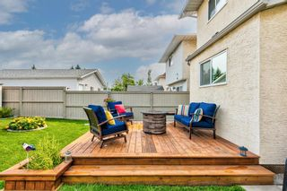 Photo 37: 173 Martinglen Way NE in Calgary: Martindale Detached for sale : MLS®# A1144697