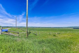 Photo 33: 386099 128 Street W: Rural Foothills County Detached for sale : MLS®# A1122418