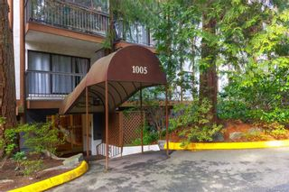 Photo 19: 211 1005 McKenzie Ave in Saanich: SE Quadra Condo for sale (Saanich East)  : MLS®# 843439