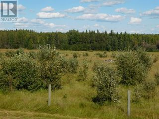 Photo 7: 35 Acres For Sale