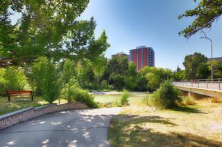 Photo 44: 503 2419 ERLTON Road SW in Calgary: Erlton Apartment for sale : MLS®# A1028425