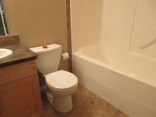 Photo 24: 424 300 Spruce Ridge Road: Spruce Grove Condo for sale : MLS®# E4229687