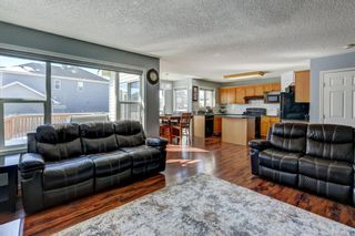 Photo 10: 181 Saddlecreek Point NE in Calgary: Saddle Ridge Detached for sale : MLS®# A1124301