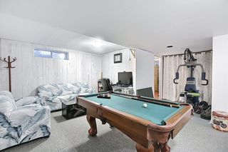 Photo 41: 144 Martinwood Court NE in Calgary: Martindale Detached for sale : MLS®# A1126396