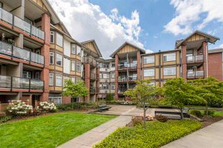 """Photo 2: 246 5660 201A Street in Langley: Langley City Condo for sale in """"PADDINGTON STATION"""" : MLS®# R2578967"""