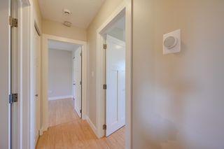 Photo 13: 11523 51 Avenue in Edmonton: Zone 15 House for sale : MLS®# E4266418
