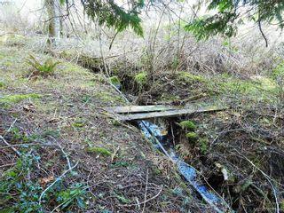 Photo 13: 1292 Covina Dr in SOOKE: Sk East Sooke Land for sale (Sooke)  : MLS®# 811043