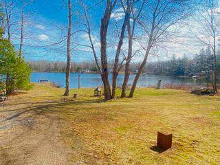 Photo 15: 868 Sunken Lake Road in Sunken Lake: 404-Kings County Residential for sale (Annapolis Valley)  : MLS®# 202108226