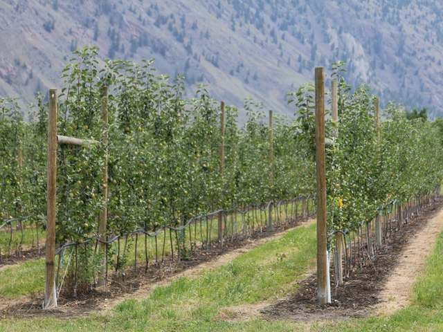 FEATURED LISTING: LOT 12 OSPREY Lane Keremeos