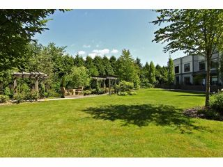 """Photo 17: 301 8880 202ND Street in Langley: Walnut Grove Condo for sale in """"THE RESIDENCES AT VILLAGE SQUARE"""" : MLS®# F1409404"""