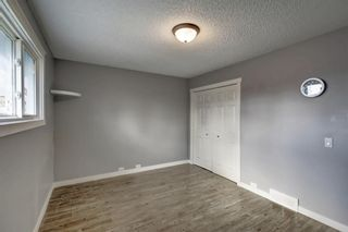 Photo 17: 4604 Maryvale Drive NE in Calgary: Marlborough Detached for sale : MLS®# A1090414