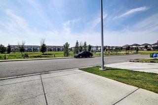 Photo 43: 113 Saddlelake Green NE in Calgary: Saddle Ridge Detached for sale : MLS®# A1127536