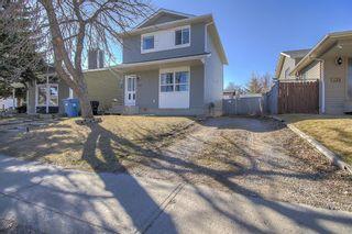 Photo 2: 143 Castleglen Way NE in Calgary: Castleridge Detached for sale : MLS®# A1100351