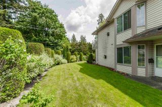 "Photo 19: 60 3110 TRAFALGAR Street in Abbotsford: Central Abbotsford Townhouse for sale in ""Northview"" : MLS®# R2270607"
