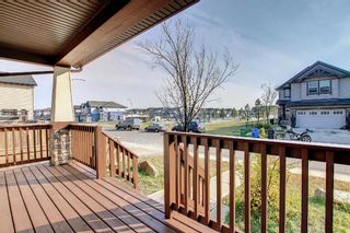 Photo 24: 3 Skyview Springs Crescent NE in Calgary: Skyview Ranch Detached for sale : MLS®# A1153447