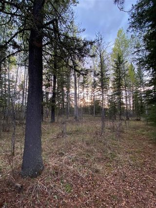 Photo 43: 350084 TWP 35-0: Rural Clearwater County Land for sale : MLS®# C4297425