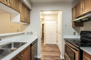 Photo 3: 208 2435 WELCHER Avenue in Port Coquitlam: Central Pt Coquitlam Condo for sale : MLS®# R2404602