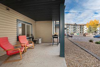 Photo 41: 122 16303 95 Street in Edmonton: Zone 28 Condo for sale : MLS®# E4265028