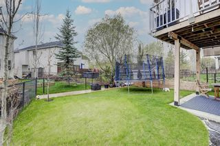 Photo 46: 57 Discovery Ridge Hill SW in Calgary: Discovery Ridge Detached for sale : MLS®# A1111834