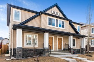 Main Photo: 20 SKYVIEW POINT Heath NE in Calgary: Skyview Ranch Semi Detached for sale : MLS®# A1088927