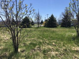Photo 3: 65 Ohio Drive in Stephenville: Vacant Land for sale : MLS®# 1234009