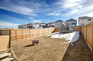 Photo 32: 459 Nolan Hill Drive NW in Calgary: Nolan Hill Detached for sale : MLS®# A1085176