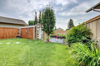 Photo 22: 110 Abalone Crescent NE in Calgary: Abbeydale Detached for sale : MLS®# A1127524