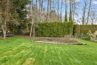 Photo 20: 31703 CHARLOTTE Avenue in Abbotsford: Abbotsford West House for sale : MLS®# R2562537