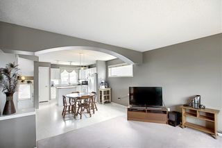 Photo 13: 47 INVERNESS Grove SE in Calgary: McKenzie Towne Detached for sale : MLS®# C4301288