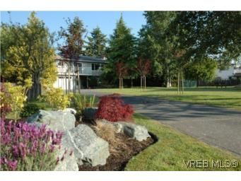 Main Photo: 7956 Arthur Dr in SAANICHTON: CS Turgoose House for sale (Central Saanich)  : MLS®# 535828