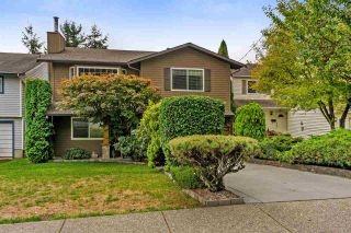 Photo 16: 19822 68 Avenue in Langley: Willoughby Heights House for sale : MLS®# R2305410