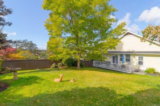 Photo 48: 745 Rogers Ave in : SE High Quadra House for sale (Saanich East)  : MLS®# 886500